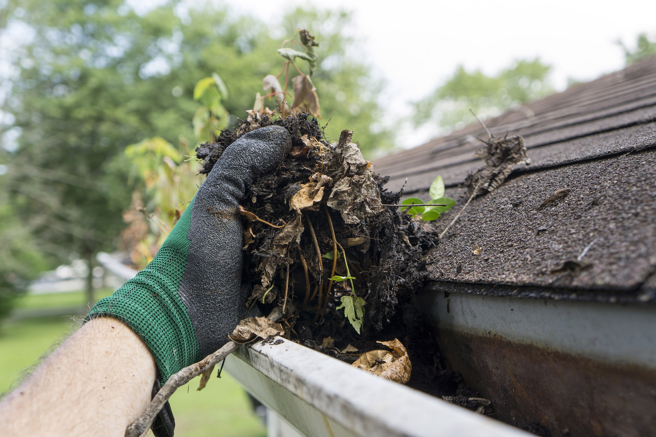 Gutter Cleaning Small