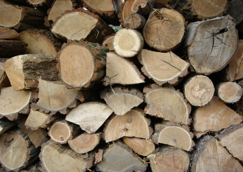 Dont Let Your Seasoned Wood Be Ruined By Improper Storage Louisville Ky All American Chimney